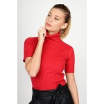 Knitted basic rib blouse with turtle neck