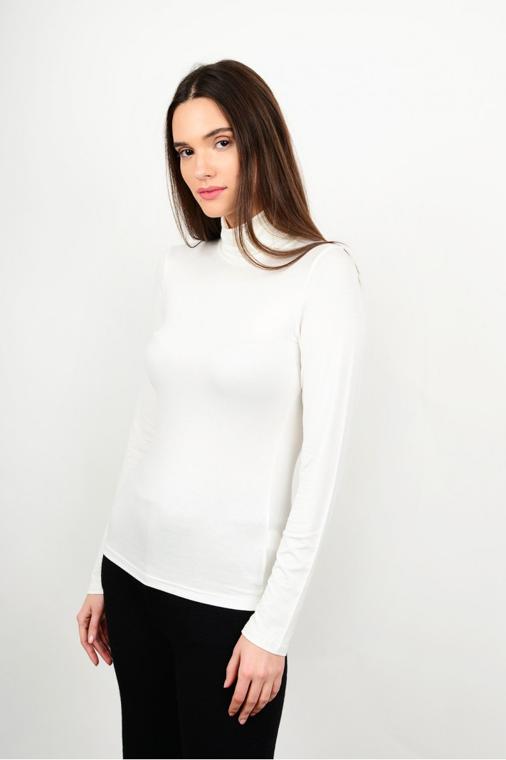 Basic blouse with turtle neck