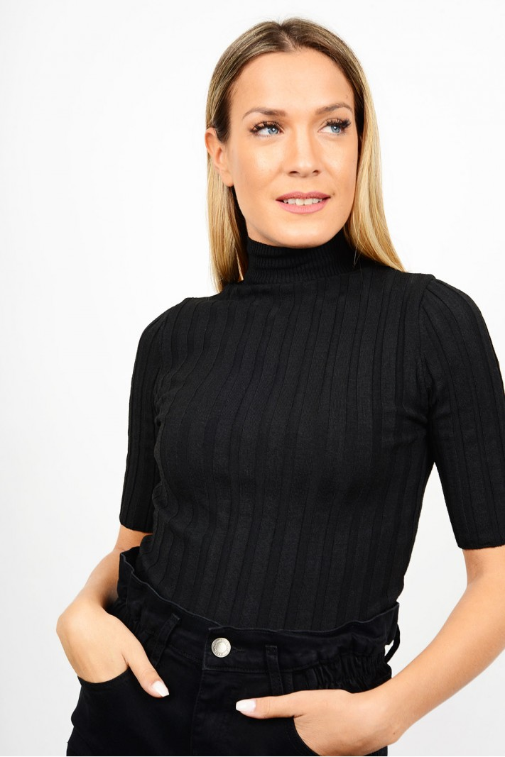 Rib blouse with turtle neck